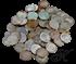 Picture of 50 gulden munten van ZILVER  (min. afname 40 st.)(DIRECT LEVERBAAR)