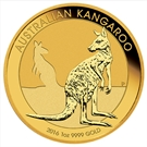 Picture of Australië: Kangaroo 2016