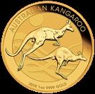 Picture of Gouden Kangaroo 2018 Australië