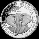 Picture of Zilveren 100 Shilling Somalia 2021 Elefant (DIRECT LEVERBAAR)